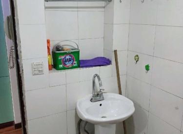 紫庭园 1室 1厅 1卫 47㎡