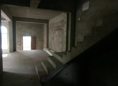 东边户鸟岛旁 赔钱卖实得500平河景别墅 桑提亚纳离市区近