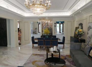浑南新市府板块 别墅现房 纯正法式类独栋 品质园区