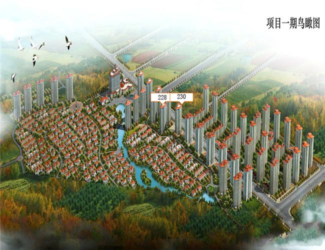 碧桂园凤凰城鸟瞰图