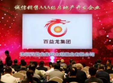 """地产领袖:王国庆荣登""""沈阳房地产年度人物""""百益龙集团摘得三项大奖"""