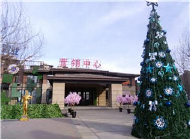 中铁丁香水岸:12月工程进度