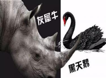 灰犀牛和黑天鹅同在 开发商千亿狂欢之后