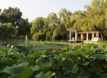 【东亚翰林世家】绿色梦想,环保乐行 绿色健步行,收获最美春季