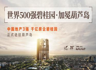 于岛心,鉴未来!世界500强 碧桂园 强势进驻葫芦岛