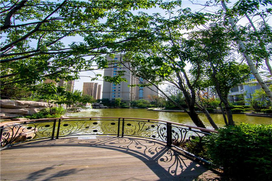 雨润中央宫园园区景观实景图