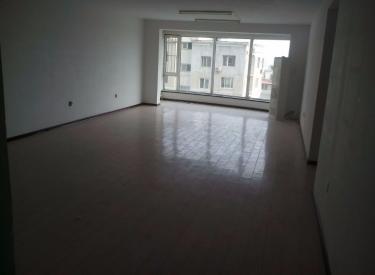 中街大悦城 两室一厅 115平