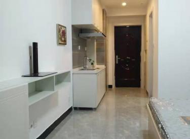 奥园会展广场 1室 0厅 1卫 公寓出租
