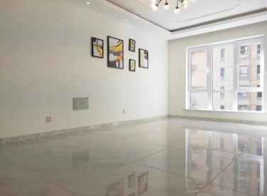 新南站地铁口奥园会展小高层 两室一厅精装修 位子好 拎包即住