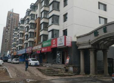 (出售)蒲河路地铁口纯一层对面盛京医院红星美凯龙