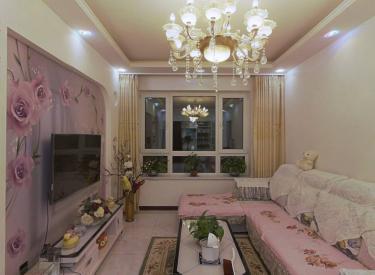 碧桂园喜居 精装修纯南一室 东西都给 急售好房