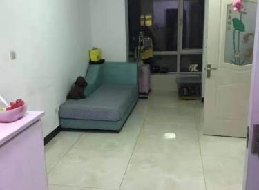 20W底价全款出售 万达广场  地雅新居 简装一居室