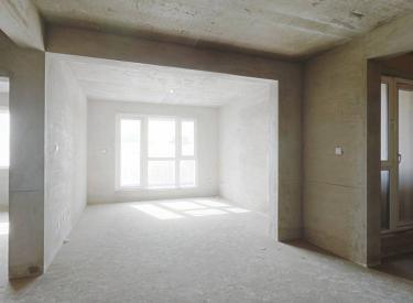 伯爵源筑 清水两室世纪大厦地铁 双阳户型 交通方便 随意装修
