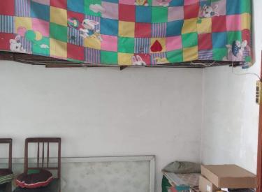 永善小区 1室1厅1卫 37.1㎡