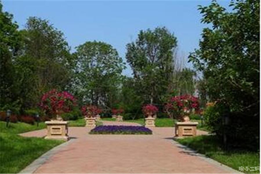 碧桂园公园里