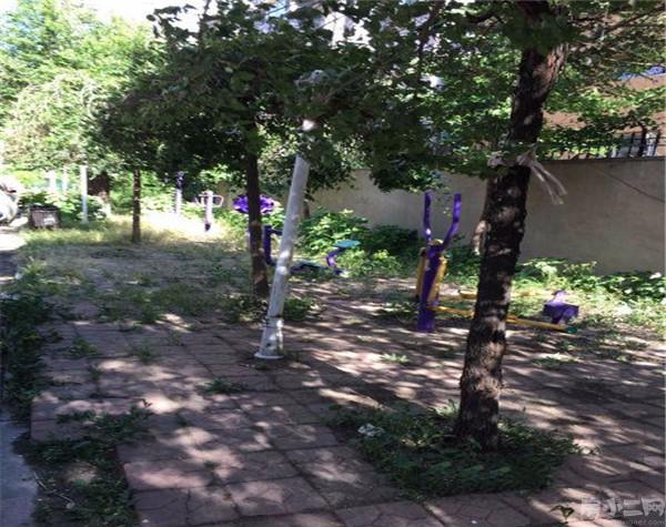 黎明罗马花园