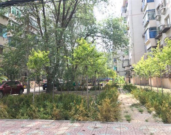 宝环社区园区图片