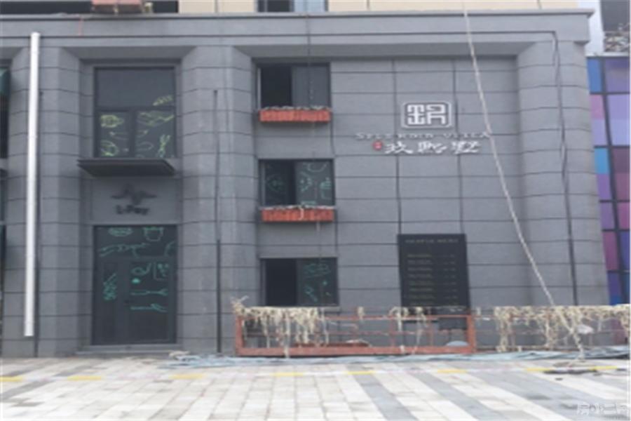 中南玖熙墅