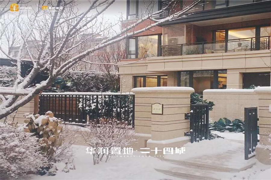 园区雪景图